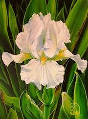 Iris Avanelle.