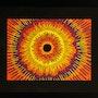 Titre de l'œuvre d'art : Pupille. Jonathan Pradillon