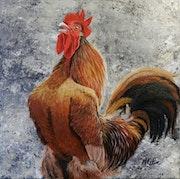 Coq Gaulois. Marie Colin