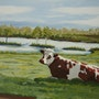 Petite vache normande. Dubois Gerard