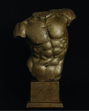 Perfection The Torso. The Sculpture Gallery