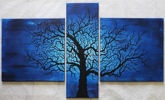 Title of the artwork: crooked tree. Jonathan Pradillon Jonathan Pradillon