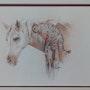 Amitié (cheval/chat). Elisabeth Le Prunenec