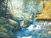 Rivière sous bois.