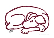 Dog - Red (Hund-Rot) - limited original graphic - Jacqueline_Ditt.