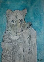 Tendresse d'une lionne a son lionceau ternura de una leona tiene su cachorro de.