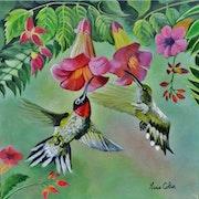 Les colibris.