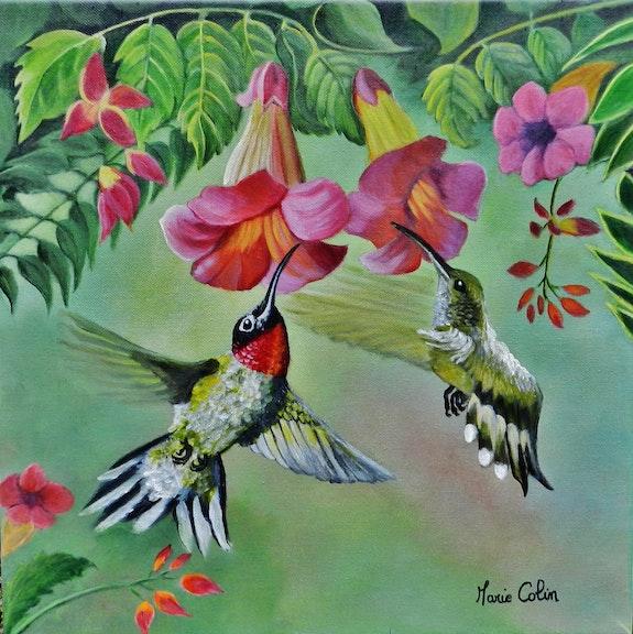 Les colibris. Marie Colin Marie Colin