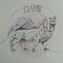 Lion 4 logo. Forangeart F. Baldinotti Peintre De l'air