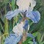 Iris bleu. Althéia - Martine Vinsot