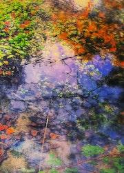 Reflejos de colores de agua.