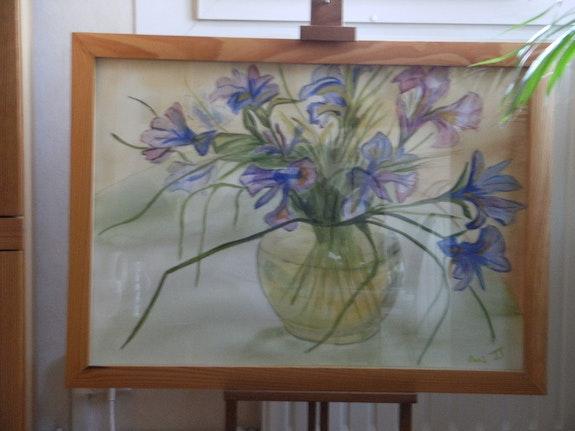 Bouquet d'Iris multicolorés.  Josiane Joly