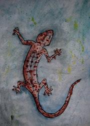 Salamander. Carla Castro