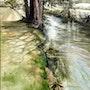 La rivière Iton, au fil de l'eau. Francois Kunze