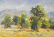 Les arbres sur un sol chaud et lumineux..