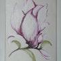 Magnolia. Yves Gennaro