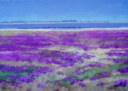 Salt marsh with sea lavenderReine.