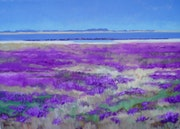 Salt marsh with sea lavenderReine. Reiner Jesse