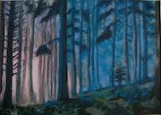 Lumière dans la forêt..