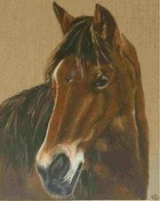 Le poney!. Raphaële