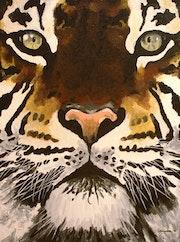 L'oeil du tigre.