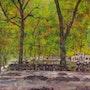 Los mundo maravillos de ammari-art 173. Ammari-Art Artiste Plastique