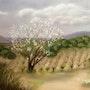 «L'arbre en fleurs». Dany Serva