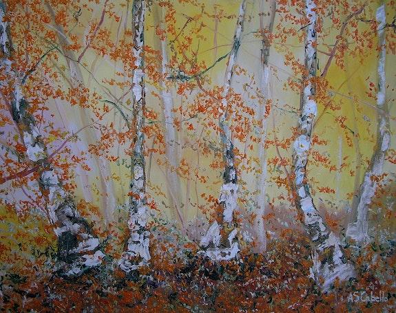 El bosque 34d. Antonio Sánchez Cabello Antonio Sanchez Cabello