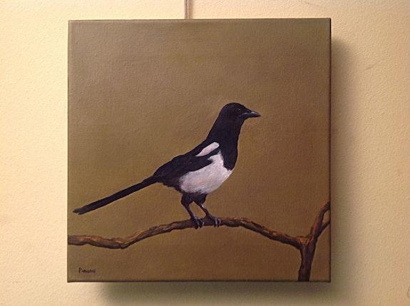 Peinture à l'huile d'une pie Oiseau Artiste Parabere Bresso. Parâbere Bresso Antiguedadesoratam