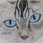 Les yeux de Féline. Sybartiste