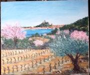 Gruissan - le printemps sur l'Ile St Martin.