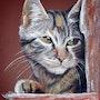 Le chat rêveur. Althéia - Martine Vinsot