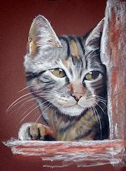 Le chat rêveur.