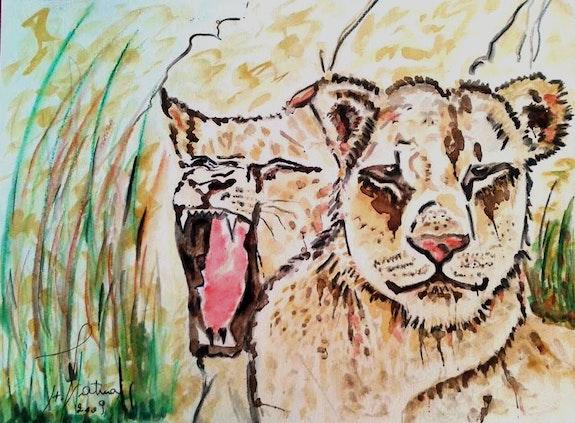 Tigers. Fatna Papillon