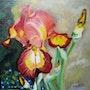 Fleur d'iris. Elisabeth Dumortier