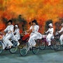 Promenade à bicyclette au Vietnam. Bernard Sannier