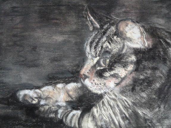 Le chat d'Amandine. Amdv Anne-Marie Vandorpe Deligne