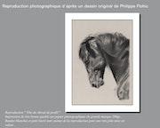 Reproduction d'un dessin original de Philippe Flohic, format 30 cm X 40 cm. Philippe Flohic