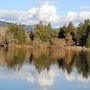 Spring Lake!. Willssb