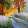 Lisière d'un bois pour une promenade dominicale de fin été/début automne. Salsera
