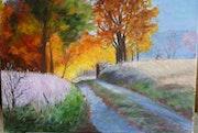 Lisière d'un bois pour une promenade dominicale de fin été/début automne.