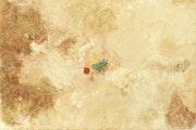 Force de vie de la nouvelle Galerie d'oeuvres intitulée » Renait Cendres».
