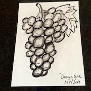 Le raisin ogm. D. A.
