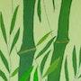 Bambous. Fk