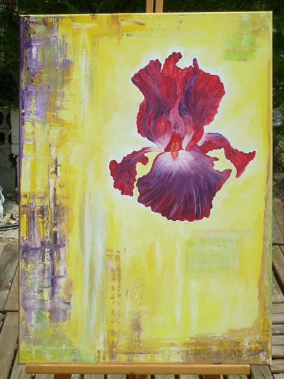 Série des Iris. M. V. Marie V.