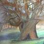 Le chêne s«culaire. Christiane Thiébaud-Fournier