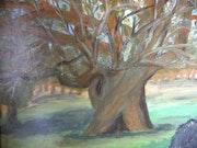 Le chêne séculaire.