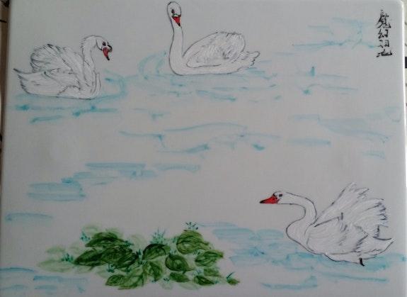 Cygnes au lac.  Plume Magicienne