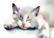 Siesta time, Original Painting by Susana Zarate, of a cat in watercolour. Susana Zarate