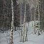 Winter im Birkenwald. Axel Zwiener
